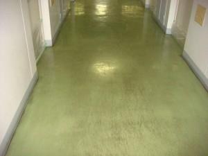 大阪の清掃、掃除の創彩(そうあ)のブログ 床面剥離洗浄01