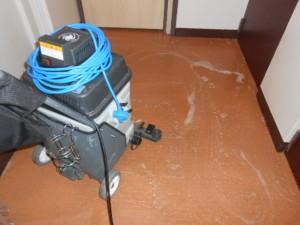 定期清掃 大阪 共有廊下 床清掃05