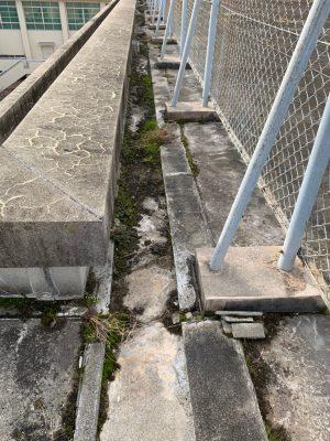 屋上の溝のつまり 業者清掃 高校屋上清掃 苔除去清掃