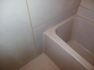 例)浴槽施工前