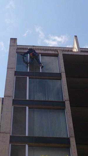 高所作業 マンション窓ガラス清掃