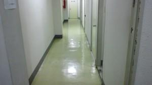 大阪市中央区 オフィスビル 廊下 剥離洗浄01